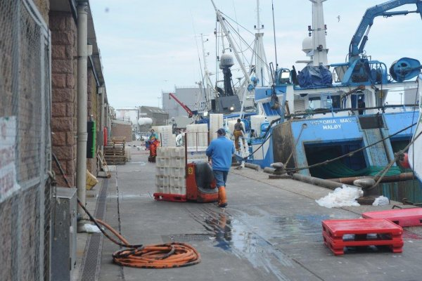 Record year for Scottish salmon production