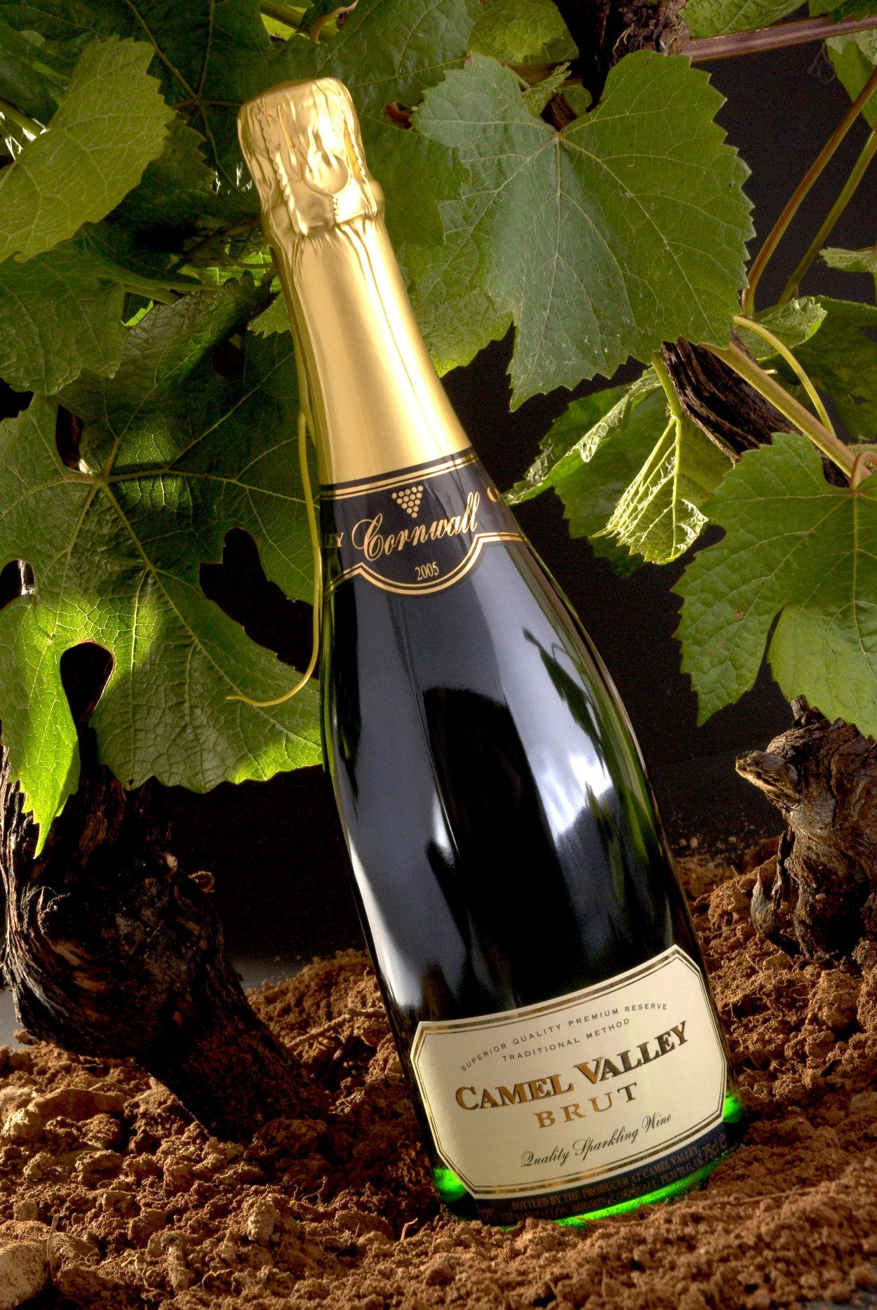 Camel Valley's Pinot Noir Rosé named favourite sparkling wine at UK's inaugural Fizz Festival
