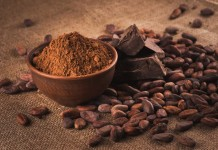 Calls for living income for West African cocoa farmers