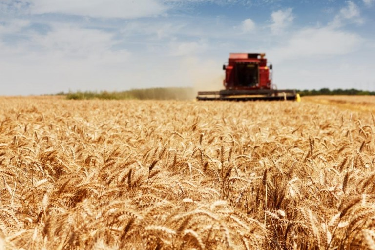 New industry network launched to tackle crop production's carbon footprint