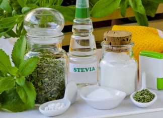Stevia on the up with market forecast for $556.7m by 2024