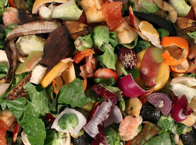 Industry survey aims to match organic waste producers with AD operators