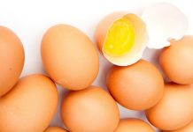 Michael Foods to build $85m egg manufacturing facility