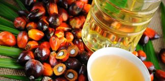Colombian palm oil company first certified by RSPO