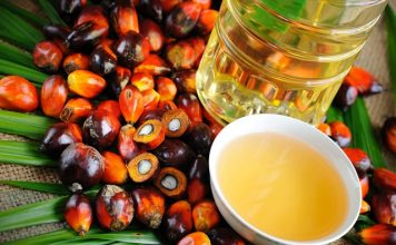 Nestlé boosting palm oil traceability with radar technology