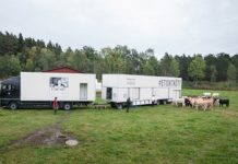 Mobile abattoir improves animal welfare and meat quality in France
