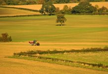 Research highlights no-deal impact on farm profitability
