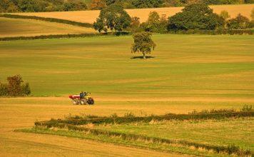 Potential multi-million pound market for green farming post-Brexit