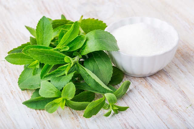New stevia leaf variety trumps previous generations, says PureCircle