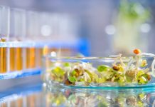 Bord Bia launches state-of-the-art Consumer Research Centre