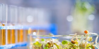 Nestlé joins partnership to support disruptive food start-ups