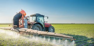 Grocery bill to soar if pesticides remove from farms, report claims