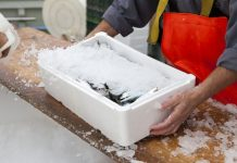 FDF and PTF form UK Seafood Industry Alliance