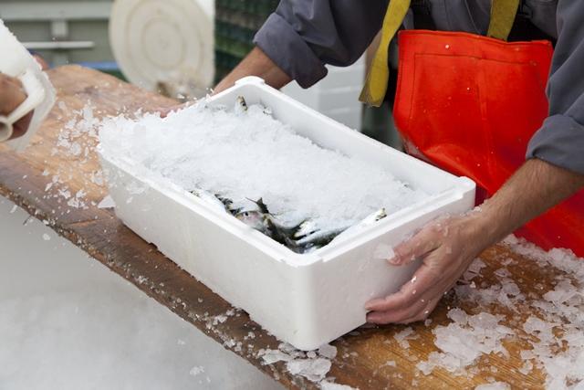 Bumble Bee Foods tracing fresh fish using blockchain