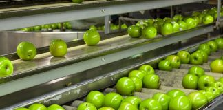 Government scheme to revolutionise UK food production