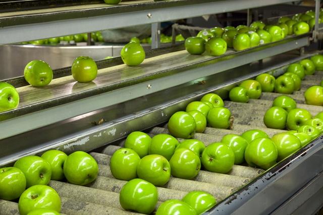 Camellia to become major UK fruit grower with Bardsley England buy