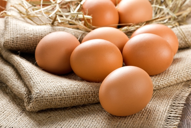 Certified Humane status for South America's biggest egg producer