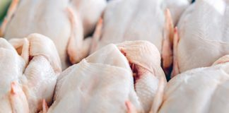 Sensor developed to improve bacteria detection in poultry
