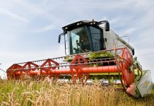 Redefine productivity & efficiency of UK farming systems, report says