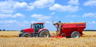Whitepaper challenges sustainability in the agri-food sector