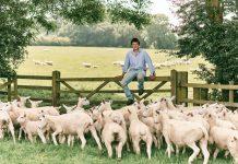 Sainsbury's supports British farmers with new season lamb commitment