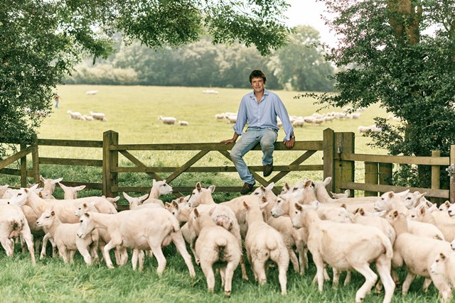 Sainsbury's supports British farmers with new season lamb commitment
