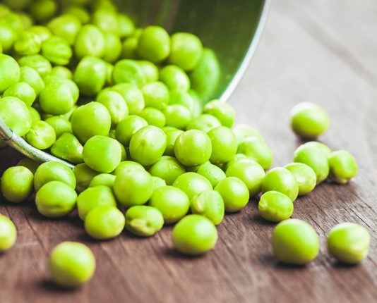 Cargill invests in PURIS to upscale pea protein production