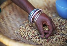 Rabobank kick-start sustainable food supply