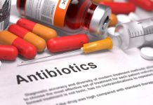 Food industry urged to stop antibiotic usage in animals