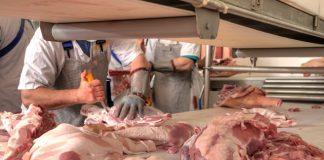 Mexican delegation visiting UK pursuing pork trade deal
