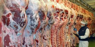 Australia opening world's first beef boning automation R&D room