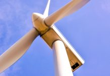 Jack Daniel's maker Brown-Forman invests in wind farm