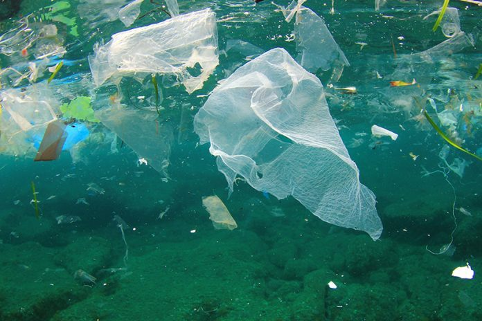 Plastic bag sales plummet since charge was introduced in England