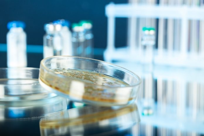 Genomic tools could boost safety in food industry, research claims