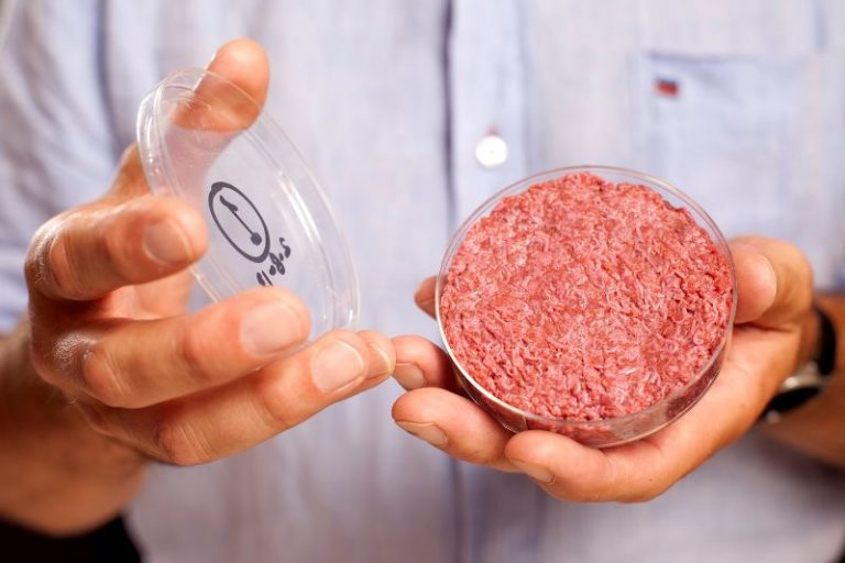 Bell Food Group further invests in cultured beef start-up, Mosa Meat