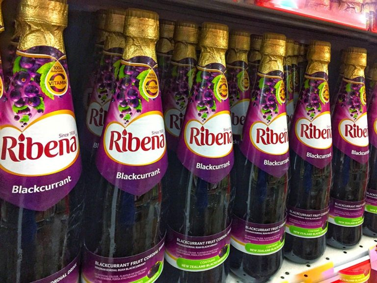 Ribena maker invests in search for climate-resilient blackcurrants