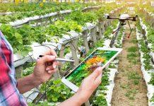 Cooks Ventures raises $12m to develop regenerative ag systems