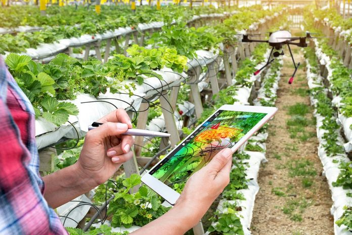 Data and connectivity top trends for agribusiness