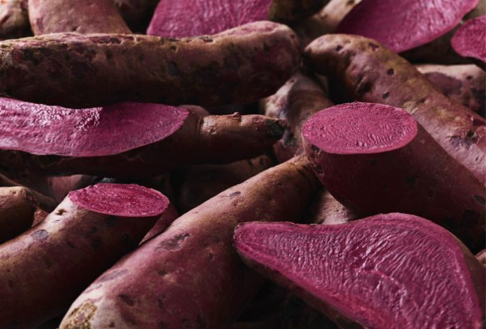 New sweet potato developed as natural red colourant