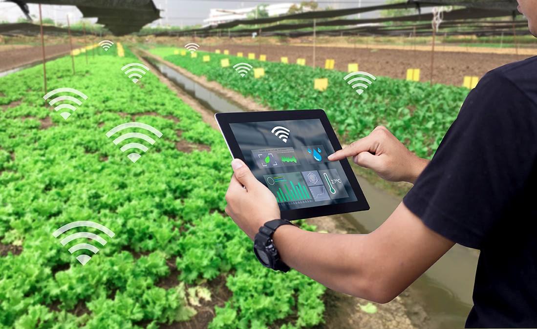 Yara & IBM using digital to 'transform' future of farming