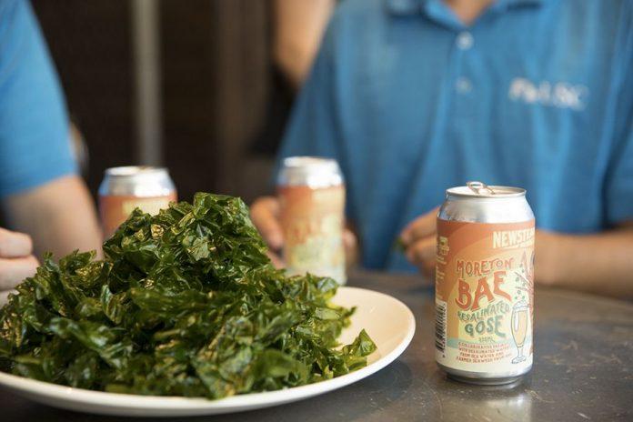 Scientists produce beer brewed with seaweed