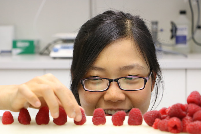 Research solving packaging and shelf life challenges of raspberries