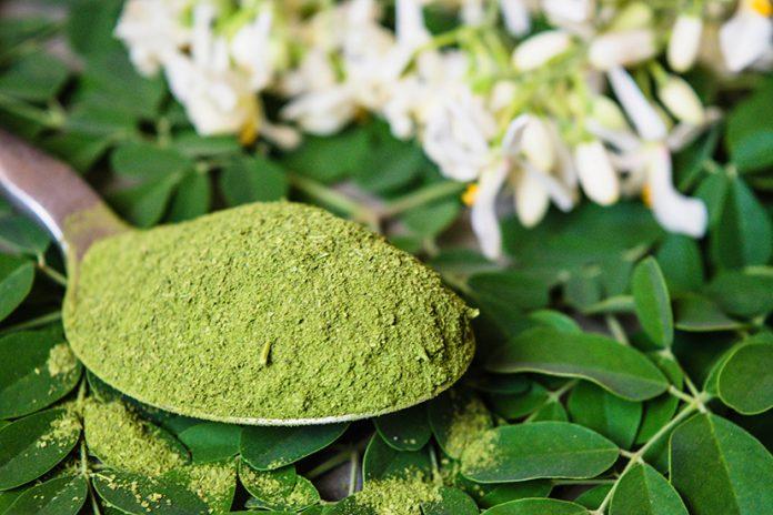 Kuli Kuli raises $5m to make moringa a household ingredient