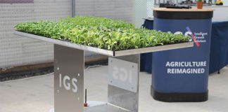 Funding boost for IGS to scale up vertical farming