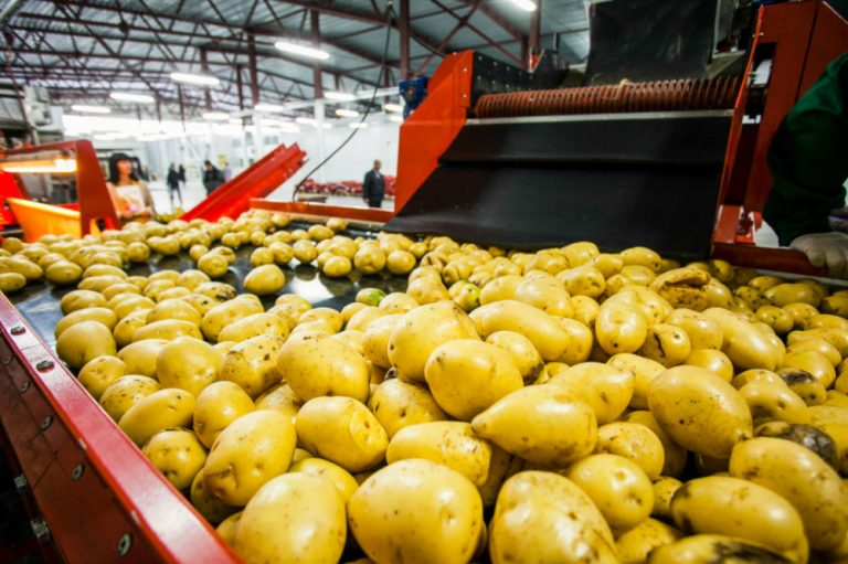 Lamb Weston / Meijer to expand capacity at french fry plant