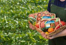 Smithfield Foods launces plant-based protein portfolio
