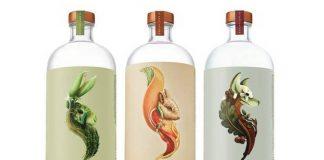 Diageo acquires distilled non-acholic spirits brand, Seedlip