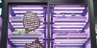 M&S provides London shoppers with urban farming