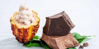 Barry Callebaut debuts ingredients utilising entire cacao fruit