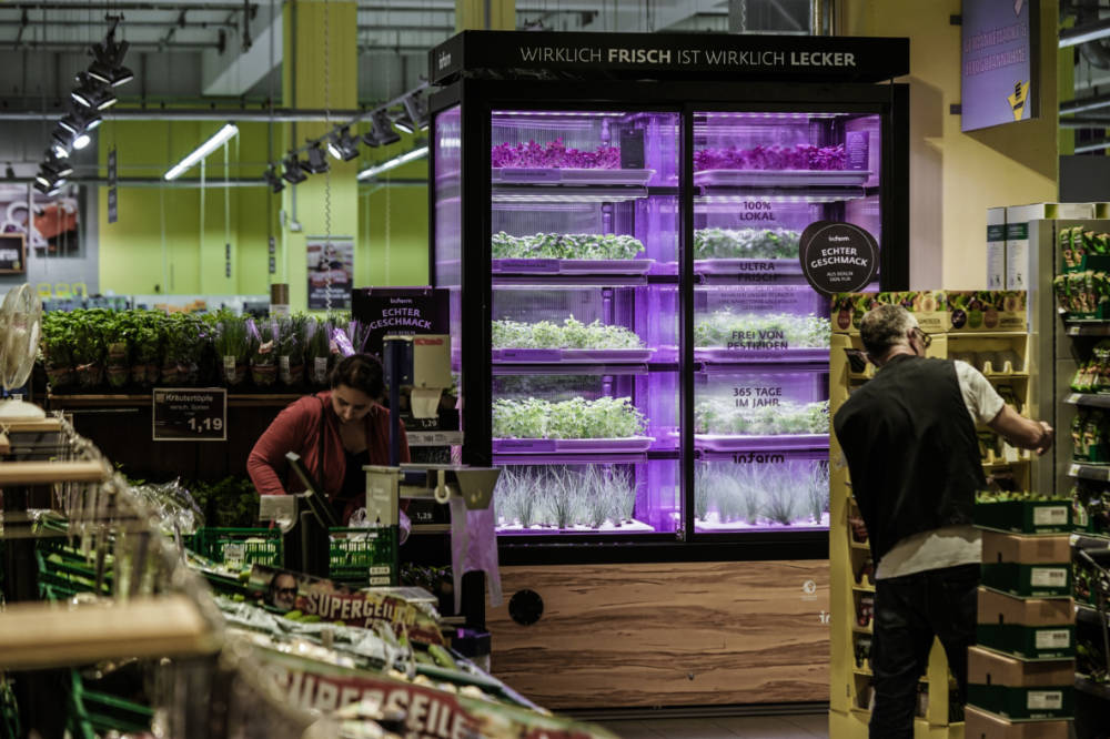 Kroger to launch in-store hydroponic farms